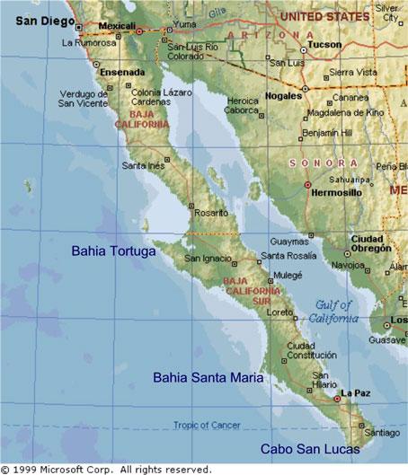 Cabo San Lucas Gun Battle 171 Expat In Baja Mexico